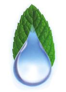 Complete Conc Logo