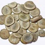 Nux Vomica is a homeopathic remedy for constipation.